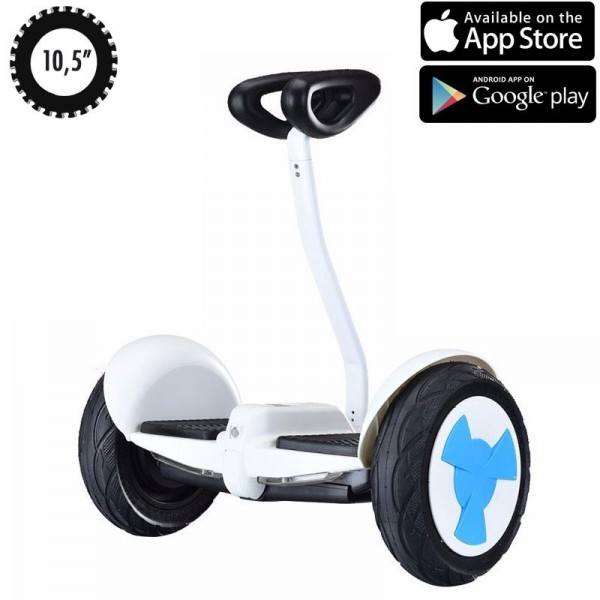 Сигвей Hoverbot Mini Robot White
